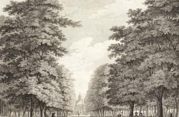 Plantage Middenlaan
